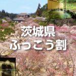 「茨城県ふっこう割」適用プランご予約はこちら(1/11更新)