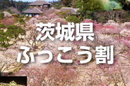 茨城県ふっこう割プラン販売再開のお知らせ(2/29更新)